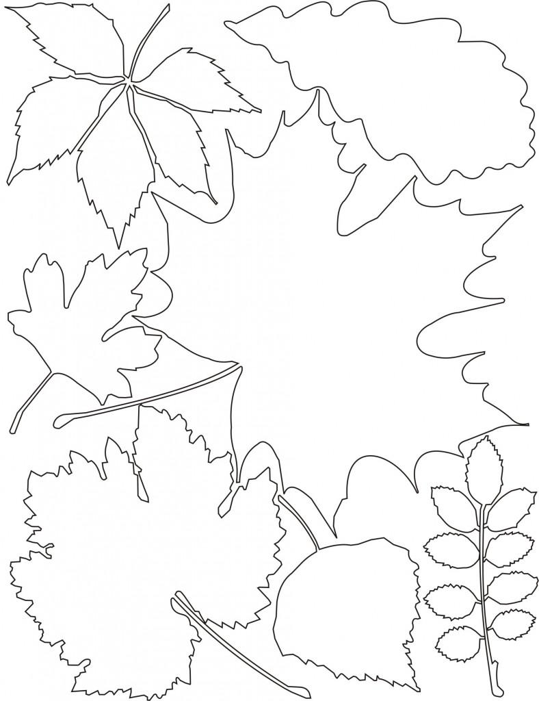 трафареты листьев