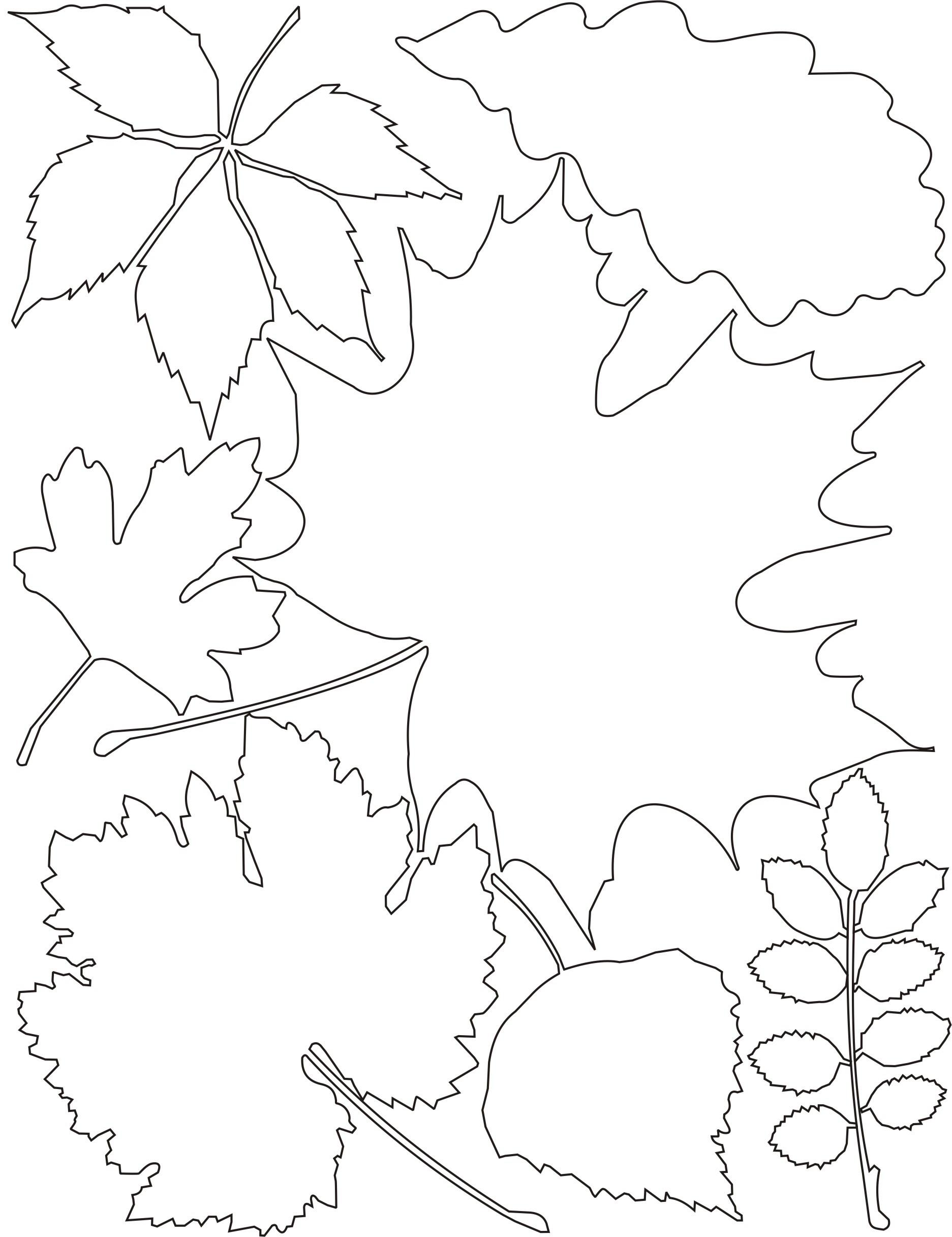 Схемы для вырезания из бумаги осень